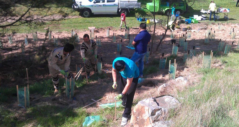 Sadh Sangat Melbourne Tree Plantation 23 sept 2