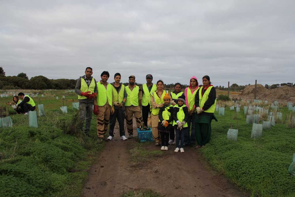 Tree Plantation drive at Adelaide