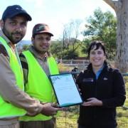 tree plantation new south wales australia