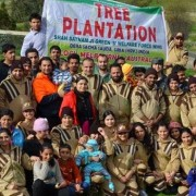 Tree plantation in melbourne australia