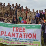 Tree plantation drives in Melbourne